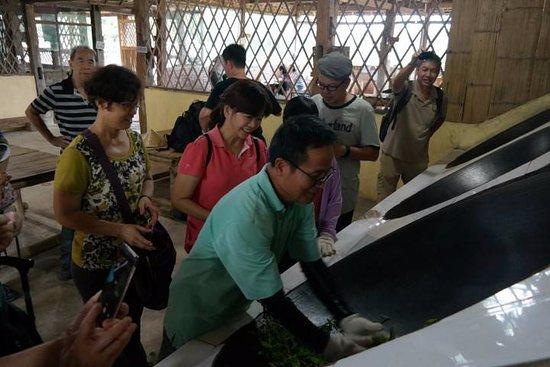 Jinghong, Cina: Xishuangbanna