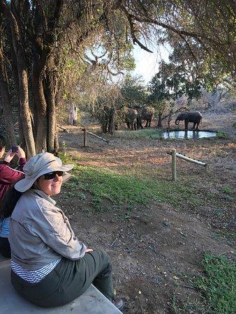 Timbavati Private Nature Reserve, Zuid-Afrika: photo3.jpg