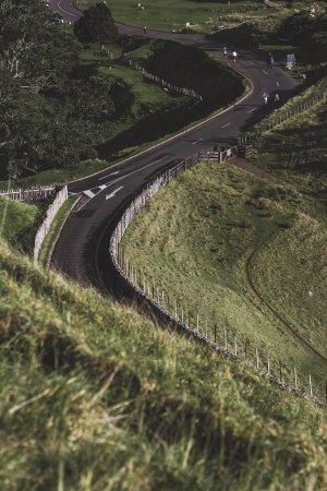 One Tree Hill (Maungakiekie) : driveway