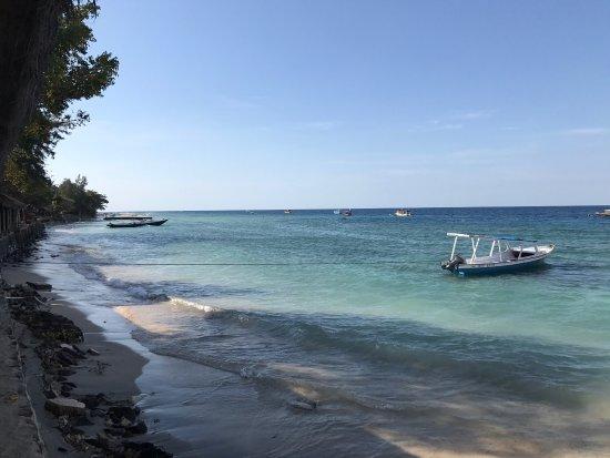 Manta Dive Gili Air Resort: photo1.jpg