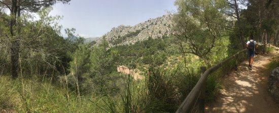 Puigpunyent, Spain: photo1.jpg