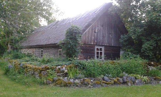 Saaremaa, เอสโตเนีย: Metsara B&B