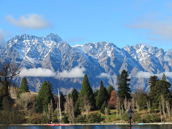 The Lodges: Wake up to this view in the morning!