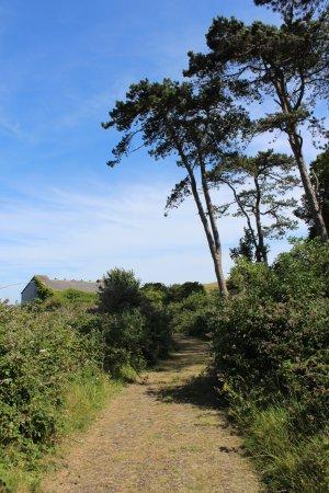 Cobh, ไอร์แลนด์: Spike Island