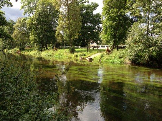 Breg Et Brigach Se Rejoignent Et Forme Danube Bild Von
