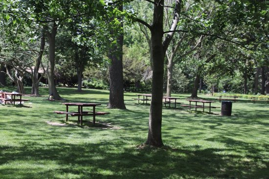 St. Catharines, Canada: Picnic Tables