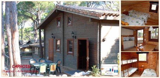 Camping La Siesta - Calella de Palafrugell: Bungalow Caproig - 5 plazas
