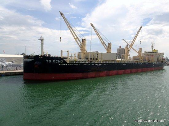 Free gambling cruises port canaveral
