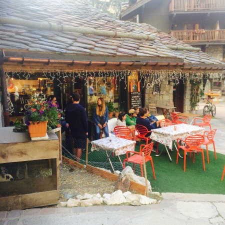Wood Bear Cafe Arc 1950
