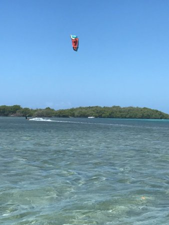 Parguera Water Sports and Adventures: photo1.jpg