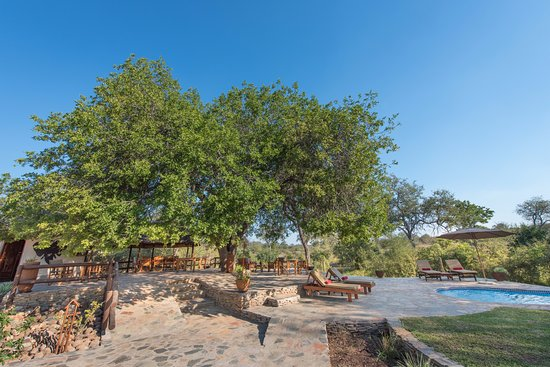Balule Nature Reserve, Νότια Αφρική: relax at our terrace at the pool