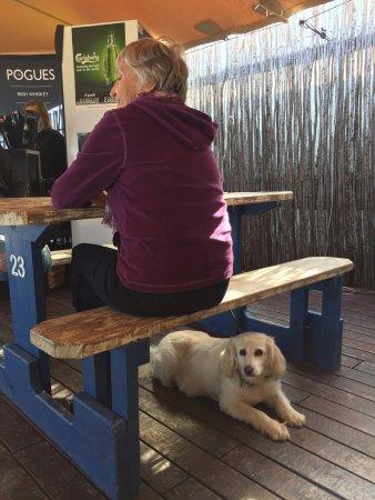 Kleinmond, Sudáfrica: Pet friendly restaurant