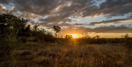 巴盧萊私家狩獵區張圖片