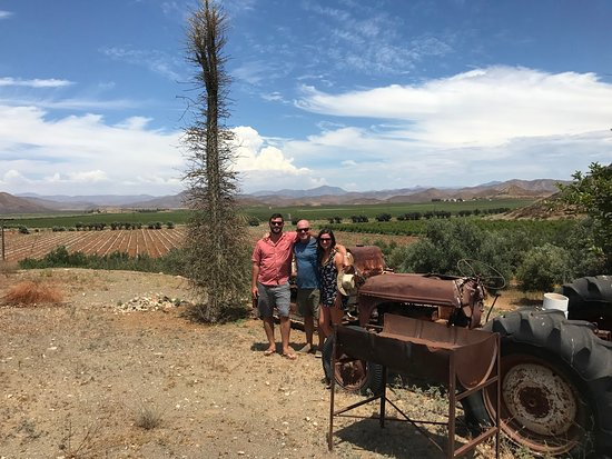 Valle de Guadalupe, Mexico: Scenic overlook with the view on BCN license plate