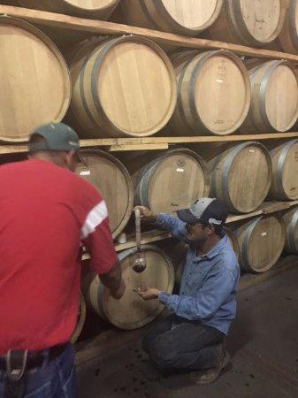 Valle de Guadalupe, Mexico: Barrel tasting treat!