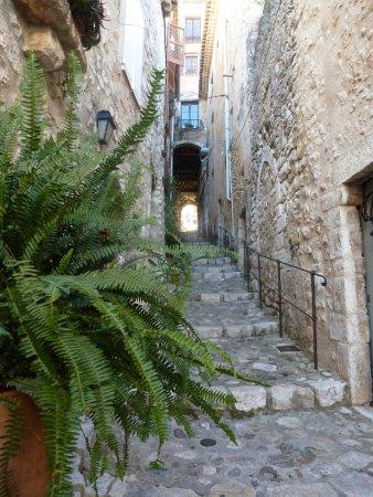 Saint-Paul de Vence: Là voilà...