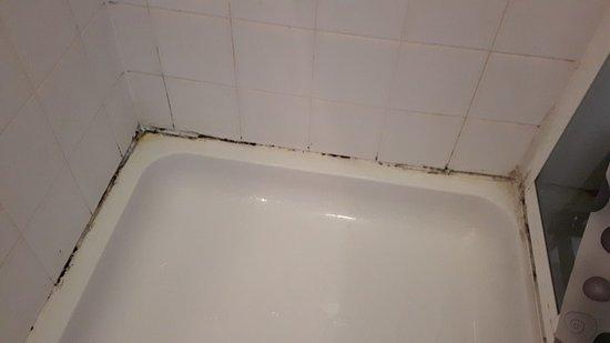 Faringdon, UK: mould in shower tray