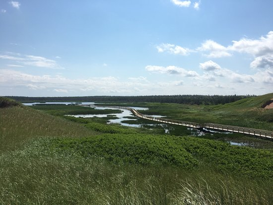 Saint Peters Bay 사진
