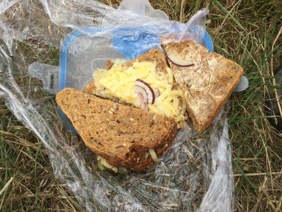 Newport -Trefdraeth, UK: The £6 cheese and onion sandwich I ordered to take with me on the coastal path.