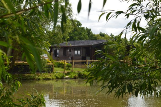 Dilton Marsh, UK: Our lodges with stunning views over the lakes