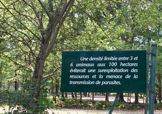Le Blanc, Francia: ZONE D'ÉLEVAGE PAS ZOO