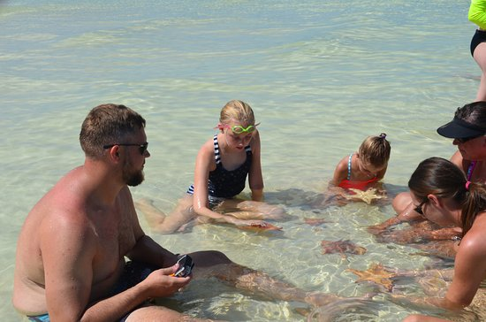 Cayman Island Small Group Tour