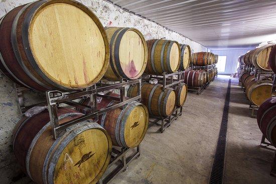 Mount Airy, Maryland: Oak barrel fermentation process. 