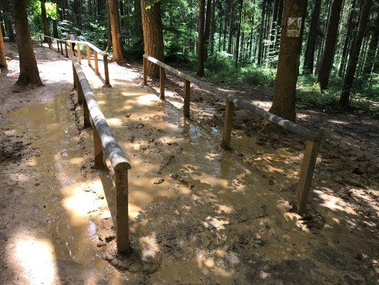 Dornstetten, Deutschland: Ein schöner Barfußpark für groß und klein.