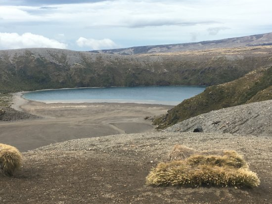 Whakapapa, New Zealand: Tama