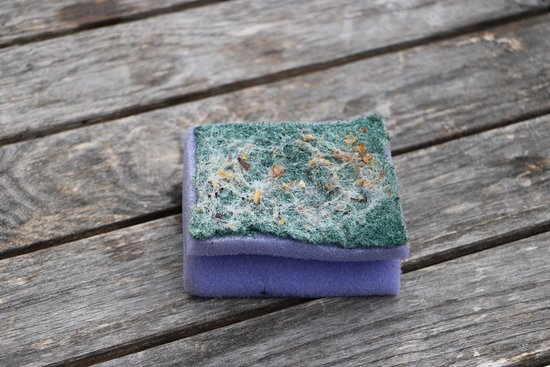 Chepstow, UK: our sponge that was for our use to clean any dishes etc we used.