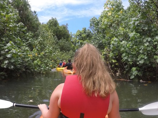 Hauula, HI: Kayaking in some close quarters