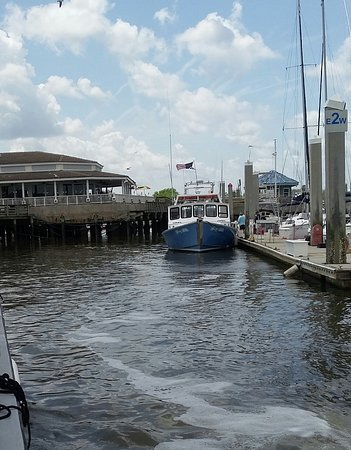 Fernandina Beach, FL: pulling into the floating docks after a great 2 hour tour