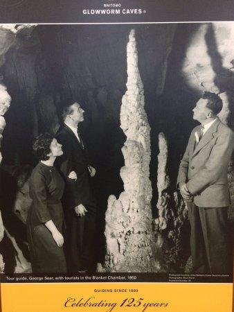 Waitomo Glowworm Caves: Visita guiada