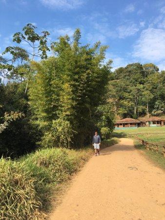 Piranga, MG: Hotel Fazenda Pirapetinga