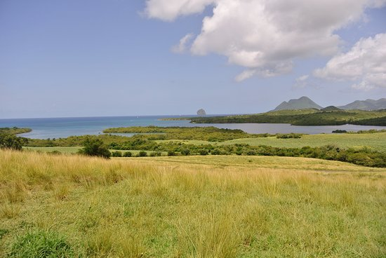 Sainte-Luce, Martinique: vue du sommet (1)