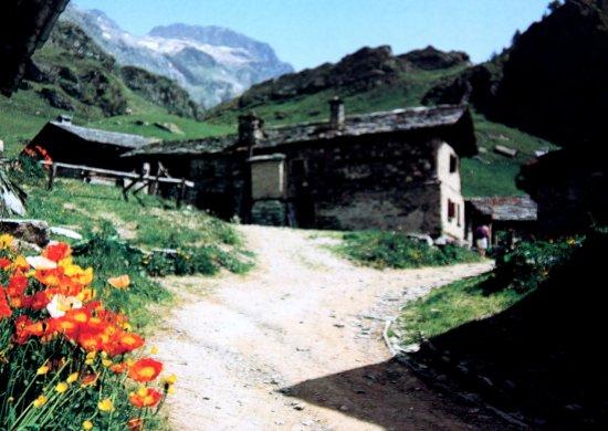 Sils im Engadin, Swiss: Grevasalvas oberhalb dem Silser See