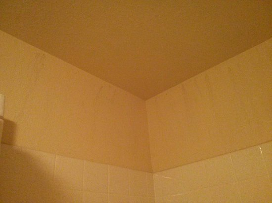 Quality Inn & Suites: Grayish stains from the ceiling down in the shower.