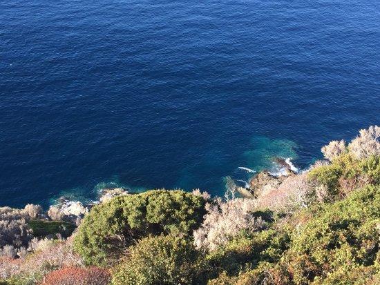 Plage de Gigaro: Chemin du littoral le matin très tôt