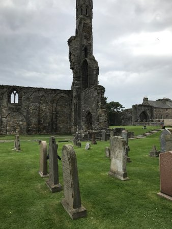 St Andrews Cathedral: Beautiful cathedral ruins
