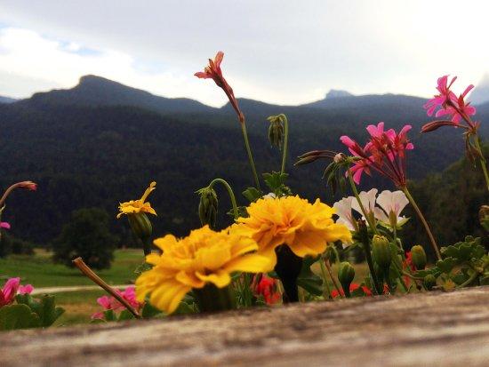 Borca di Cadore, Italia: Birraria da Bauce