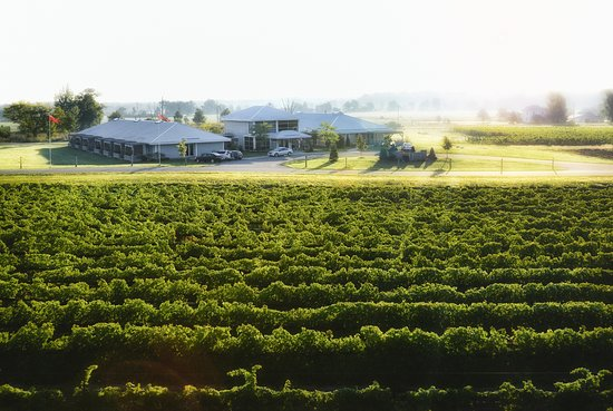 Bloomfield, Canadá: View of Huff Inn across the vineyard