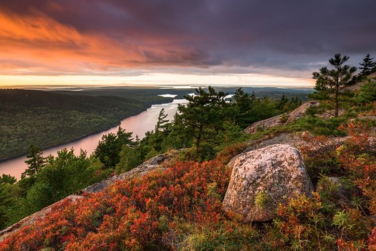 Southwest Harbor, ME: Long Pond from Beech Mountain