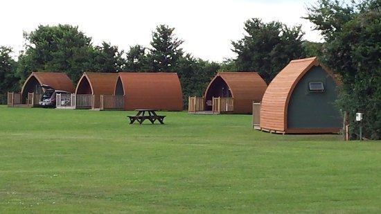 Westbury on Severn, UK: Apple Orchard Caravan & Camping Site