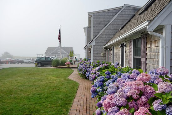 Inn On The Beach: View of hotel grounds from inner courtyard. Hydrangeas in full bloom in mid-July. Note parking!