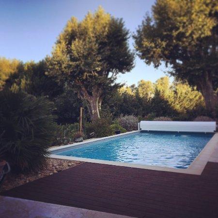 Noves, Γαλλία: Pool