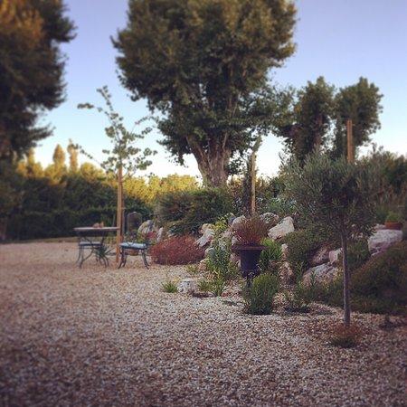 Noves, Γαλλία: Tuin