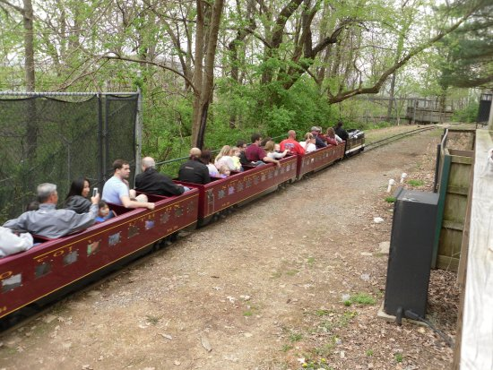 Roanoke, VA: miniature train