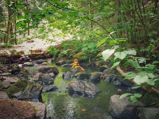 Saint-Fulgence, Canada: Petit point d'eau pour se rafraîchir.
