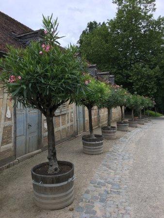 Bensheim, Duitsland: photo3.jpg