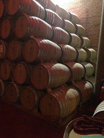 Mombaruzzo, Italien: Aging Barrels for Grappa